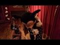 Download Platicando con Mickey mouse Video