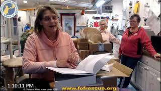 Download FFRC Boxes and Updates 01/03/2020 Friends of Felines Rescue Center (FFRC) Video