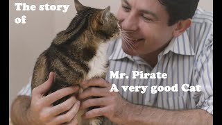 Download The story of Mr. Pirate, possibly the best cat EVAR Video