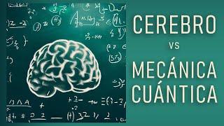 Download La mecánica cuántica del cerebro Video