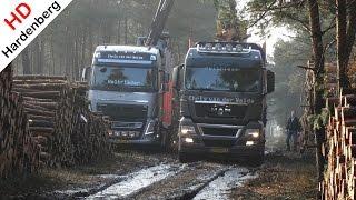 Download MAN Truck in mud   Get wood in the forest   Jan van der Weide & Zn Transport   NL. Video