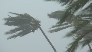 Download Cat 5 Super Typhoon Mangkhut Lashes N Philippines - Full 4K Stock Footage Video