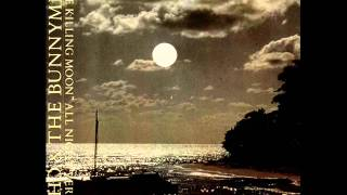 Download Echo & The Bunnymen - The killing moon (All night version) (1984) Video
