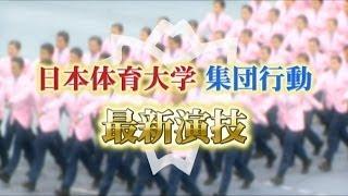 Download 【集団行動】日本体育大学 最新演技 Video