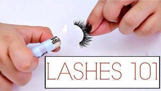 Download False Lashes Tips And Tricks For Beginners! | The how to guide for Lashes Video