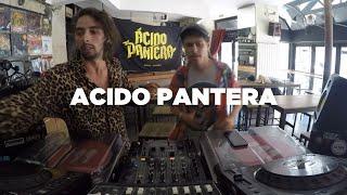 Download Acido Pantera • DJ Set • Le Mellotron Video