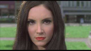 Download The Love Witch - Trailer Video