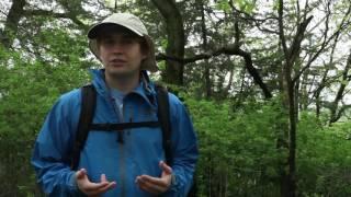 Download Oak Savanna Reintroduction - Andrew Swenson Video