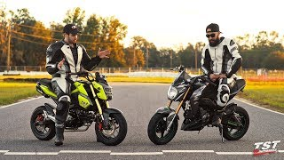 Download Honda Grom vs Kawasaki Z125: What's the difference? Video