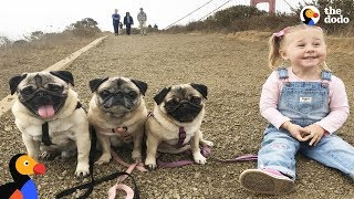 Download Kids And Dogs Growing Up Together as Best Friends Compilation | The Dodo Video
