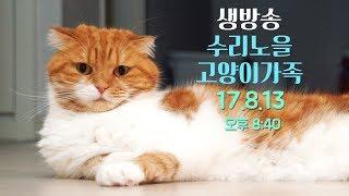 Download LIVE ]오늘도 팬선물 대 개봉기! 8월13일(일) 8:30PM 【SURI&NOEL】 Video