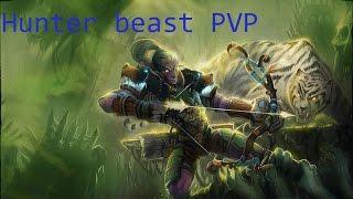 Download WoW //Legion // Beast Hunter PvP 110 Video