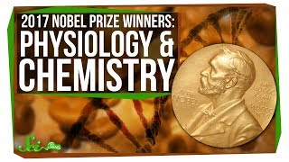 Download The 2017 Nobel Prizes: Biological Clocks and Microscopy Video