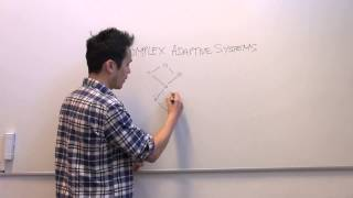 Download What are complex adaptive systems? Video