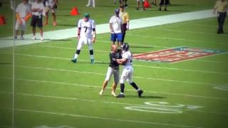 Download NFL Fans Running Onto Field Compilation Video