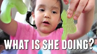 Download WHAT ARE THEY DOING WITH THOSE?! - May 10, 2017 - ItsJudysLife Vlogs Video