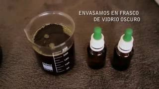 Download Preparación de Aceite Medicinal De Cannabis - mbu* Video