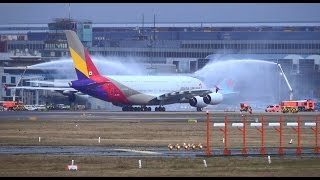 Download Asiana Airlines A380 FIRST FLIGHT to Frankfurt Video