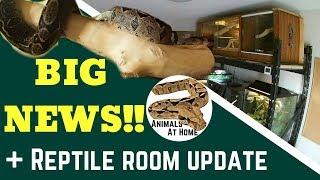 Download Big News & Reptile Room Update! Video