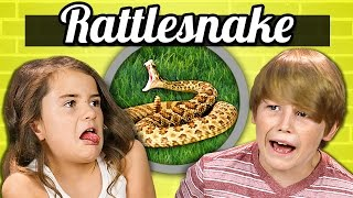 Download KIDS vs. FOOD - RATTLESNAKE Video