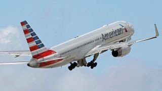 Download American Airlines employee allegedly hit woman with stroller Video