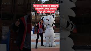 Download McMaster student volunteers at 2018 Winter Olympic Games Video