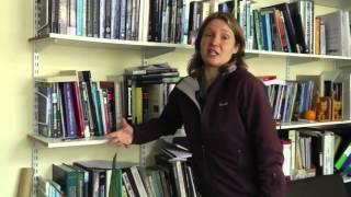 Download Green Gown Awards 2014 - Leadership Award - Professor Patrick Bailey - Winner Video
