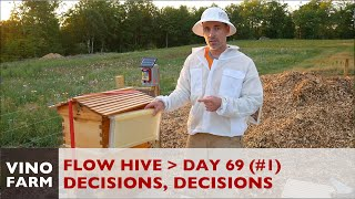 Download Flow Hive - The Decision - Day 69 (Part 1) - Beginner Beekeeping Video