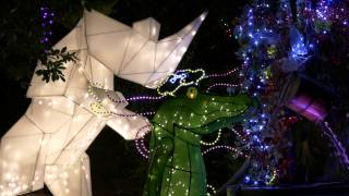Download L.A. Zoo Lights Opening Night Video