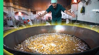 Download INDIAN FOOD Touched by GOD! How to Cook for 10,000 People in Delhi's Biggest Sikh Temple! Video