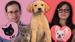 Download Dog Facts Vs. Cat Facts Video