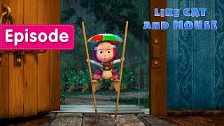 Download Masha and The Bear - 🐱 Like Cat And Mouse 🐭 (Episode 58) Video