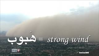 Download What is a Haboob? Video