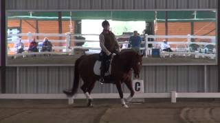 Download James Shaw Lateral Work Video