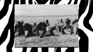 Download Lion Hunters Video