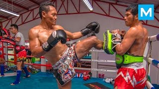Download Saenchai Muay Thai Training | Muscle Madness Video