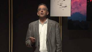 Download TEDxRainier - Dimitri Christakis - Media and Children Video