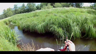 Download Small Creek fishing. From Another Point Of View. Part 2. Video
