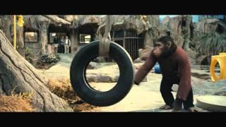 Download El Origen del Planeta de los Simios - Nuevo tráiler Video