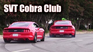 Download Mustangs leaving SVT Cobra Club ★ Parkway Ford Show 2015 (2 of 3) Video