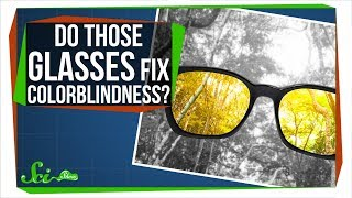 Download Do Those Glasses Really Fix Colorblindness? Video