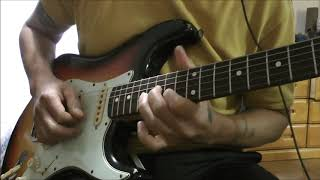 Download Red Hot Chili Peppers - Torture Me - Guitar Lesson Video