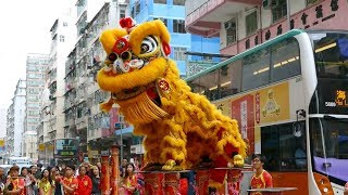 Download Chinese New Year 2019 Lion Dance, Hong Kong Video