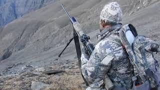 Download Dagestan Tur hunting in Azerbaijan...Kenan hunting... Video