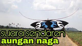 Download SUARA SENDAREN AUNGAN NAGA(AGUS LEE) Video