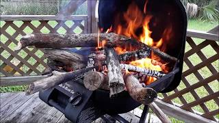 Download My Wife's Argentina Asado (BBQ) Cooked Over Walter's Tree (V1364) Living In A Van Dweller Video
