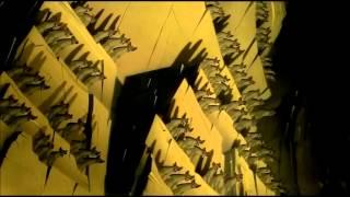 Download El Rey León - Preparaos [ES-España] [HD] Video