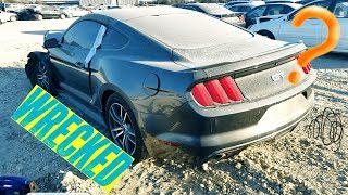 Download Searching thru COPART for more MUSTANGS! Video
