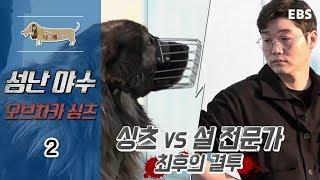 Download 세상에 나쁜 개는 없다 - 성난 야수 오브차카 싱츠 #002 Video