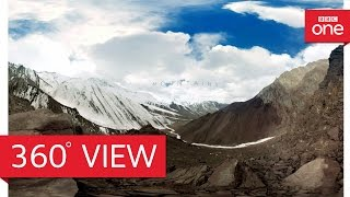 Download Snow leopards in 360° - Planet Earth II: Mountains - BBC One Video